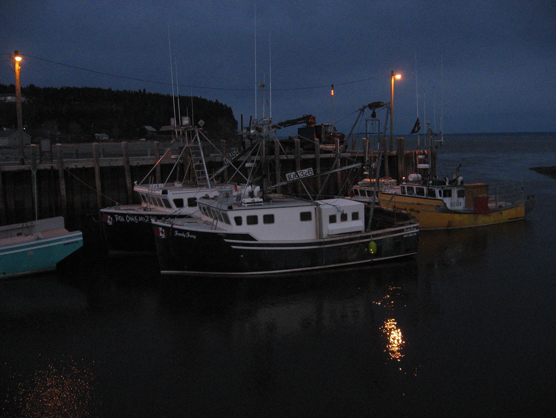 Fishing boats in Alma, NB
