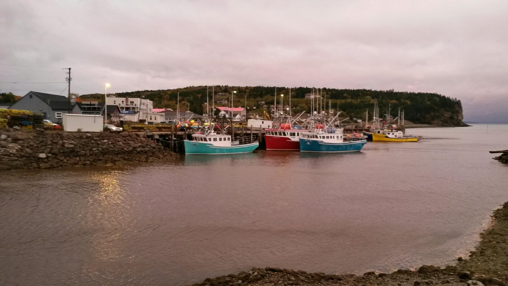 Fishing boats at Alma, NB