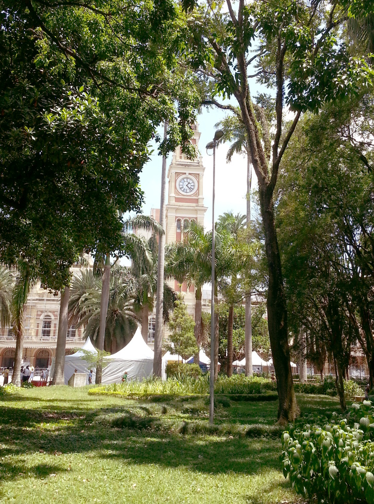 Clock tower of Luz station, from park