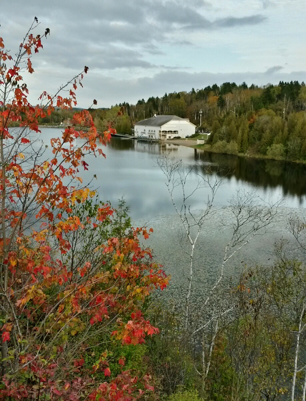 Rockwood Park (Lily Lake Pavilion) in Autumn