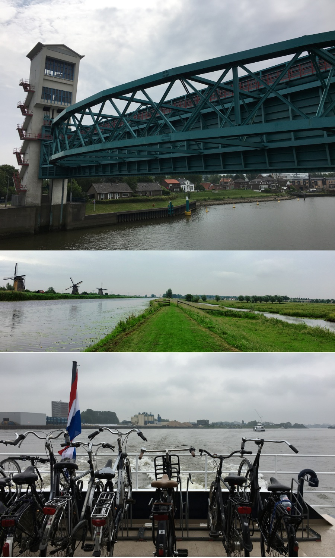 Biking near Rotterdam