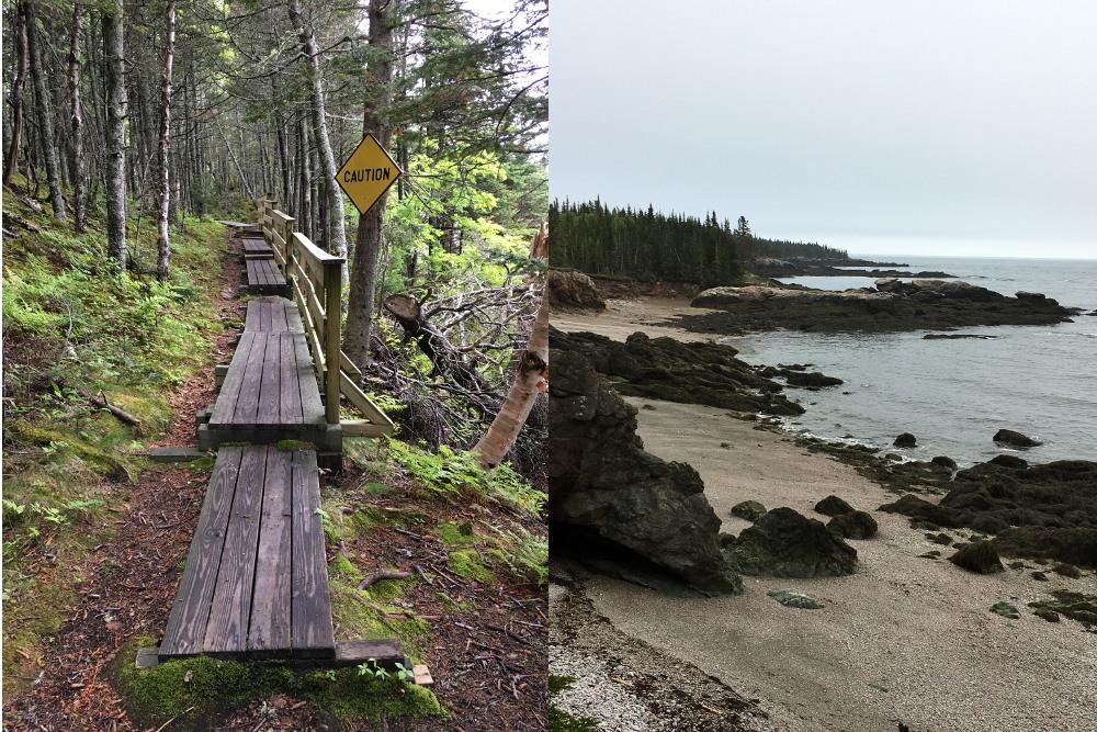 Chittick's Beach trail